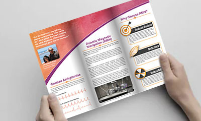 link to brochures section